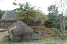 Typical Mayan homes