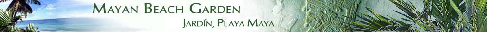 Mayan Beach Garden Resort, Jardin de Playa Maya