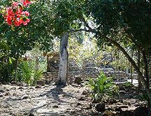 San Gervasio ruin on Conzumel